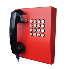 wall mounted emergency service telephone